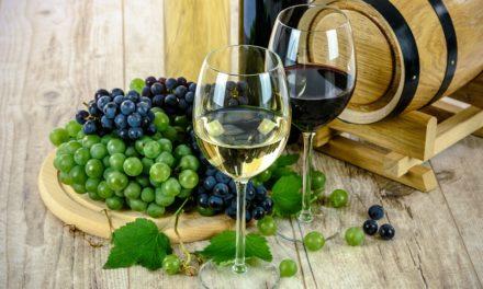 Tout savoir sur les vins biologiques
