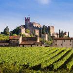 Qu'est-ce qui fait du Château Ferrière l'un de spécialistes du vin bordelais?